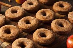 Θερμός μηλίτης Donuts της Apple Στοκ Φωτογραφίες