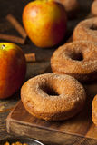 Θερμός μηλίτης Donuts της Apple Στοκ Εικόνες