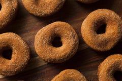 Θερμός μηλίτης Donuts της Apple Στοκ Εικόνα