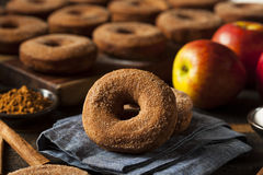 Θερμός μηλίτης Donuts της Apple Στοκ φωτογραφίες με δικαίωμα ελεύθερης χρήσης