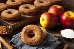 Θερμός μηλίτης Donuts της Apple Στοκ εικόνα με δικαίωμα ελεύθερης χρήσης