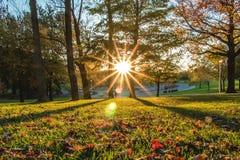 Θερμό ηλιοβασίλεμα στο βασιλικό parc mont - Μόντρεαλ Στοκ Φωτογραφία