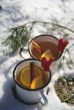 Θερμό φλυτζάνι της Νίκαιας του τσαγιού ή του καφέ υπαίθρια στη χιονώδη σκηνή στοκ φωτογραφία