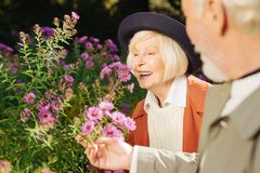 Θετική ευτυχής ηλικίας γυναίκα που απολαμβάνει τη μυρωδιά λουλουδιών στοκ εικόνες