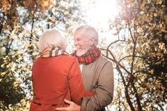 Θετικός ευχαριστημένος άνδρας που στέκεται με την αγαπημένη γυναίκα του στοκ εικόνα με δικαίωμα ελεύθερης χρήσης