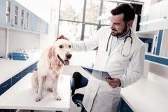 Θετικός ευχαριστημένος γιατρός που εξετάζει τον ασθενή του στοκ εικόνα