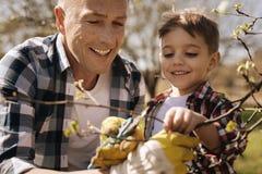 Θετικός ευχαριστημένος χρόνος εξόδων γιων και μπαμπάδων στη φύση στοκ εικόνες
