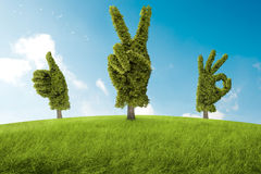 Θετικό δέντρο ελεύθερη απεικόνιση δικαιώματος