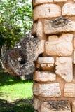 Θεός Chichen Itza Μεξικό Chac Στοκ Εικόνες