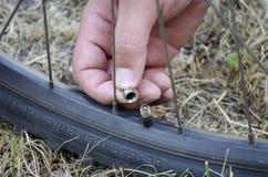 Θηλή ποδηλάτων στοκ φωτογραφία με δικαίωμα ελεύθερης χρήσης