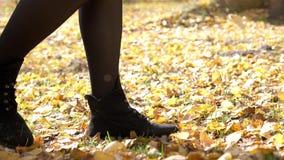 Θηλυκά βήματα κατά μήκος του ζωηρόχρωμου φυλλώματος φθινοπώρου του πάρκου πόλεων Περίπατος το φθινόπωρο Κλείστε επάνω την άποψη π απόθεμα βίντεο