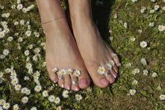 Θηλυκά πόδια που χαλαρώνουν στο χορτοτάπητα χλόης Στοκ Εικόνες