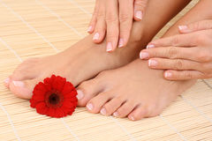 θηλυκά πόδια χεριών Στοκ εικόνα με δικαίωμα ελεύθερης χρήσης