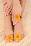 θηλυκά πόδια χεριών Στοκ φωτογραφία με δικαίωμα ελεύθερης χρήσης
