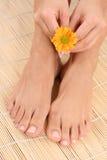 θηλυκά πόδια χεριών Στοκ φωτογραφίες με δικαίωμα ελεύθερης χρήσης