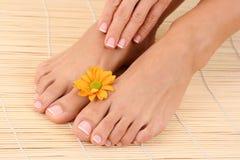 θηλυκά πόδια χεριών Στοκ Φωτογραφίες