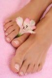 θηλυκά πόδια Στοκ Εικόνες