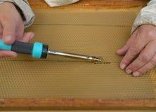 Θηλυκά χέρια μελισσοκόμων Στοκ φωτογραφία με δικαίωμα ελεύθερης χρήσης