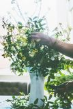 Θηλυκά χέρια που κάνουν τη θερινή δέσμη με τα άγριους λουλούδια και τους κλαδίσκους στον πίνακα στο καθιστικό στο παράθυρο Στοκ Εικόνες