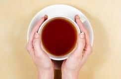 θηλυκά χέρια φλυτζανιών που κρατούν το τσάι Στοκ Εικόνες