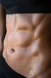 Θηλυκά ABS Στοκ Εικόνες
