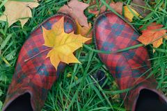 Θηλυκές λαστιχένιες μπότες με τα φύλλα σφενδάμου πτώσης στη χλόη Στοκ φωτογραφίες με δικαίωμα ελεύθερης χρήσης