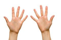 θηλυκές παλάμες χεριών Στοκ φωτογραφίες με δικαίωμα ελεύθερης χρήσης