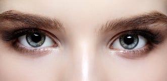 Θηλυκή ζώνη ματιών και brows με την ημέρα makeup Στοκ Εικόνες