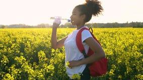 Θηλυκή νέα γυναίκα εφήβων κοριτσιών αφροαμερικάνων που με το κόκκινο σακίδιο πλάτης στον τομέα των κίτρινων λουλουδιών συναπόσπορ φιλμ μικρού μήκους