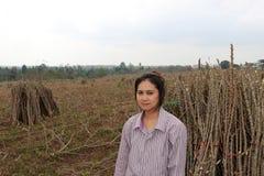 Θηλυκή συνεδρίαση αγροτών με το άκρο ταπιόκας που κόβει το σωρό μαζί στο αγρόκτημα στοκ εικόνα με δικαίωμα ελεύθερης χρήσης
