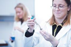 θηλυκοί ερευνητές δύο Στοκ φωτογραφία με δικαίωμα ελεύθερης χρήσης