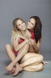 θηλυκοί φίλοι Στοκ Φωτογραφίες