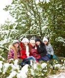 θηλυκοί φίλοι Στοκ εικόνα με δικαίωμα ελεύθερης χρήσης