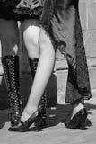 θηλυκός αισθησιακός πρ&omicr Στοκ Εικόνες