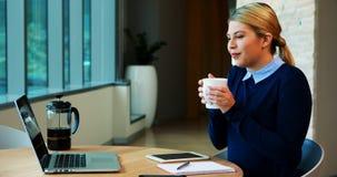 Θηλυκός ανώτερος υπάλληλος που έχει μια τηλεοπτική κλήση στο lap-top απόθεμα βίντεο