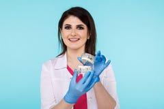 Θηλυκός γιατρός που κρατά το πλαστό σαγόνι απομονωμένο πέρα από το μπλ στοκ εικόνες με δικαίωμα ελεύθερης χρήσης