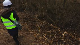 Θηλυκός επιθεωρητής δασονομίας στην κλίση που καταρρίπτει πλησίον τους θάμνους απόθεμα βίντεο