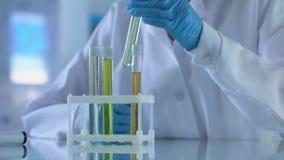 Θηλυκός ερευνητής που χαρακτηρίζει τους σωλήνες δοκιμής, βιομηχανία αρωματοποιιών, cosmetology πείραμα φιλμ μικρού μήκους