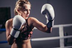 Θηλυκός μπόξερ που φορά τα γάντια που θέτουν στον εγκιβωτισμό του στούντιο στοκ φωτογραφίες