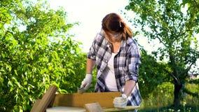 Θηλυκός ξυλουργός με τα προστατευτικά γυαλιά να κάνει την ξύλινη εργασία στο θερινό κήπο απόθεμα βίντεο