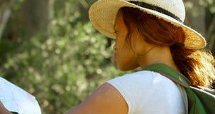 Θηλυκός οδοιπόρος που εξετάζει το χάρτη στην επαρχία 4k φιλμ μικρού μήκους