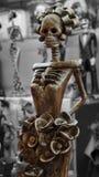 Θηλυκός σκελετός Στοκ Φωτογραφία