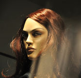 θηλυκός φανείτε προκλητική γυναίκα μανεκέν Στοκ φωτογραφία με δικαίωμα ελεύθερης χρήσης