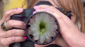 Θηλυκός φωτογράφος που φωτογραφίζει ένα ανθίζοντας λουλούδι απόθεμα βίντεο