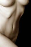 θηλυκός nude κορμός Στοκ εικόνα με δικαίωμα ελεύθερης χρήσης