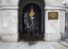 θηλυκό άλογο φρουράς Στοκ εικόνες με δικαίωμα ελεύθερης χρήσης