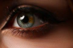 Θηλυκό αριστερό πράσινο μπλε χρωματισμένο μάτι Στοκ φωτογραφίες με δικαίωμα ελεύθερης χρήσης