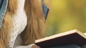 Θηλυκό βιβλίο ανάγνωσης και καυτό τσάι κατανάλωσης υπαίθρια, άνεση και ζεστασιά το φθινόπωρο φιλμ μικρού μήκους