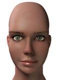 θηλυκό κεφάλι Στοκ εικόνες με δικαίωμα ελεύθερης χρήσης