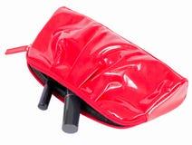 θηλυκό κόκκινο τσαντών κα&l Στοκ Εικόνες